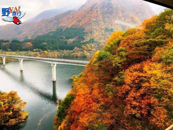 想念日本紅葉了嗎?東武鐵道沿線賞楓秘境報你知 @YA 野旅行-陪伴您遨遊四海