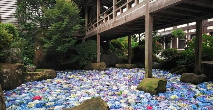 茨城縣「雨引觀音」祈福除厄 繡球花開帶來希望   @YA !野旅行-玩樂全世界