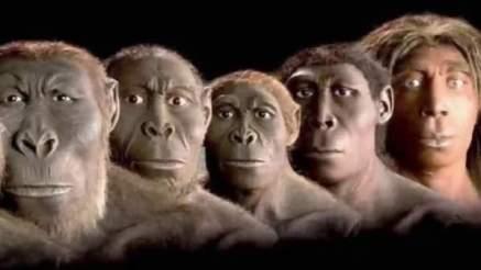 Evrim 2. Bölüm  Ethem Arı