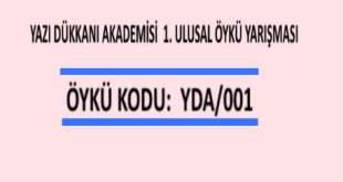 ÖYKÜ YARIŞMASI      Öykü Kodu :  YDA/001
