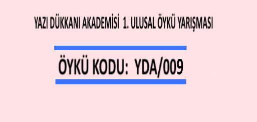 ÖYKÜ YARIŞMASI Öykü Kodu: YDA/009