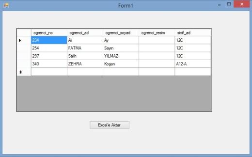 excel_veri_form