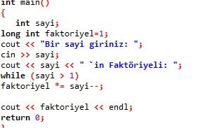 while_ornekleri