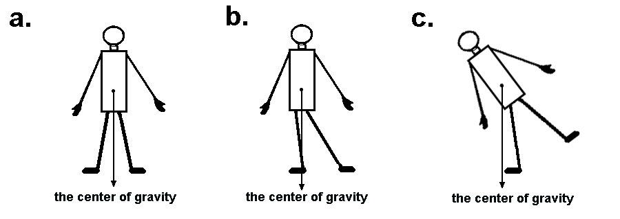 Biomechanics and Newtons Laws: Force-Time Curves and
