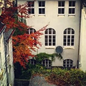 i_autumn