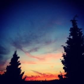 i_sky_dusk_trees