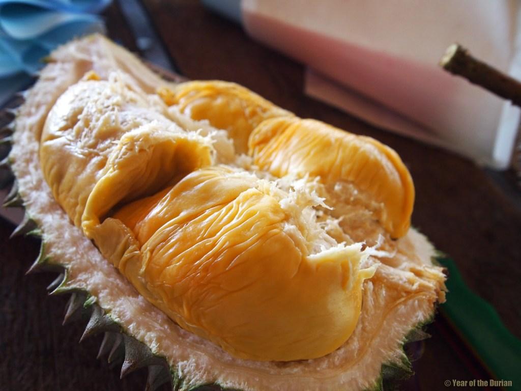 durian birthday
