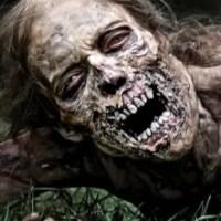 Der Zombiefilm – Die Geschichte der Untoten von Voodoo bis zu Infizierten
