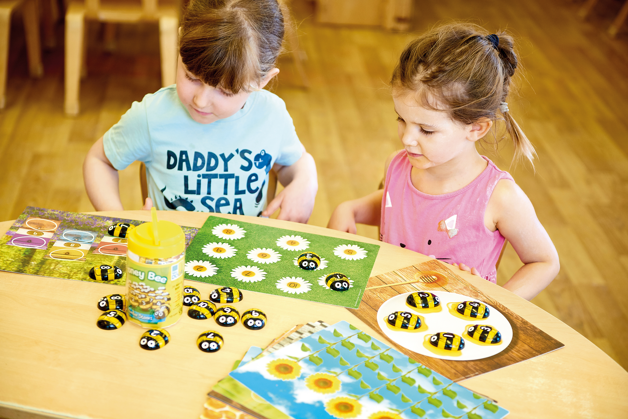 Honey Bee Number Stones And Activity Cards
