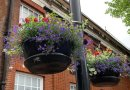 Brentwood borough blooms with beauty