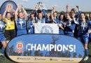 Design Essex County FA's new safeguarding mascot