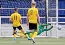 #YellowSport Non-League round-up