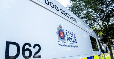 Sniffer dog reveals suspected drugs find in Canvey car search