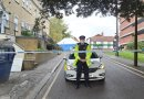 Eight arrests after two teenagers die in Brentwood