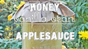 Honey Vanilla Bean Applesauce