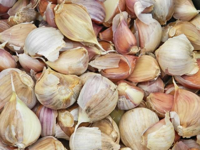 Preparing Garlic for Long Term Storage