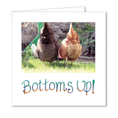 Chicken Celebration Card
