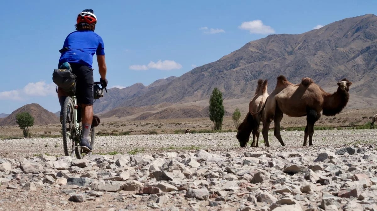 bikepacking - marcus rides past camels