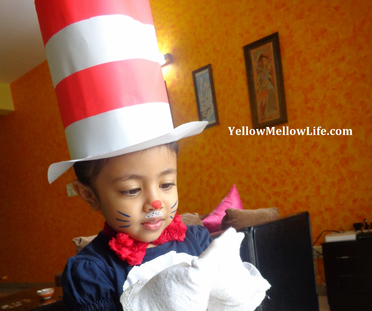 A Fancy 'The Cat in the Hat' Costume From Not So Fancy Material