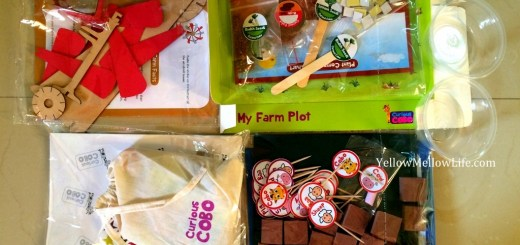 Science Activity Box for Kids