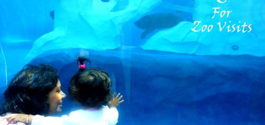 zoo visit with kids and what to expect