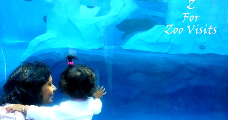 Zoo Visits With Kids Tips and Tricks