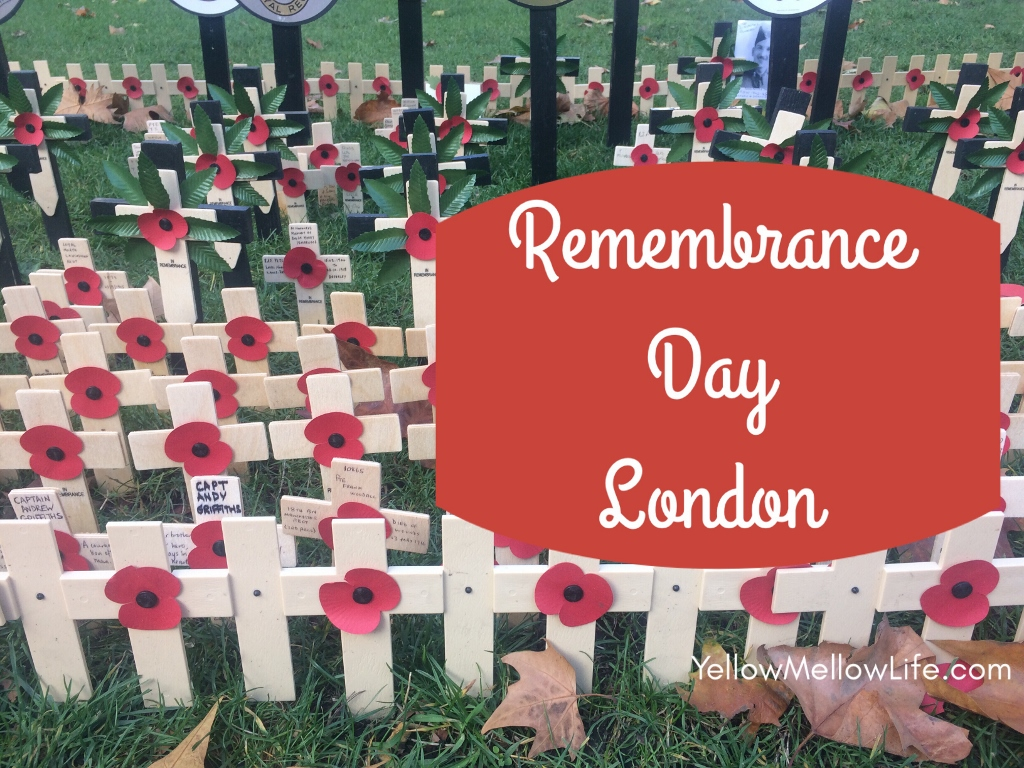 Observing Remembrance Day with Kids in London