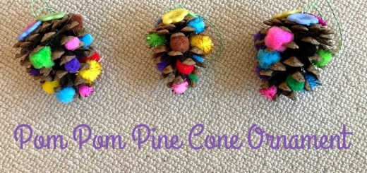 Pom Pom Pine Cones Christmas Ornaments