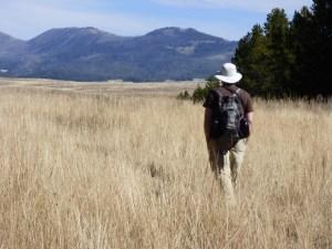 Hiking in Yellowstone