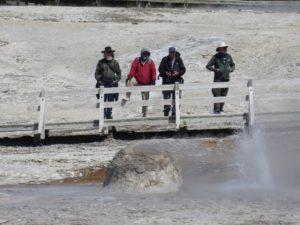 Summer Sightseeing Tours Yellowstone
