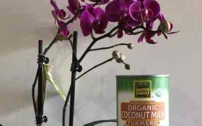 Organic Turmeric Coconut Milk w/Donut Recipe