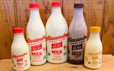 Alexandre larger size Organic A2/A2 Milk & Chocolate Milk