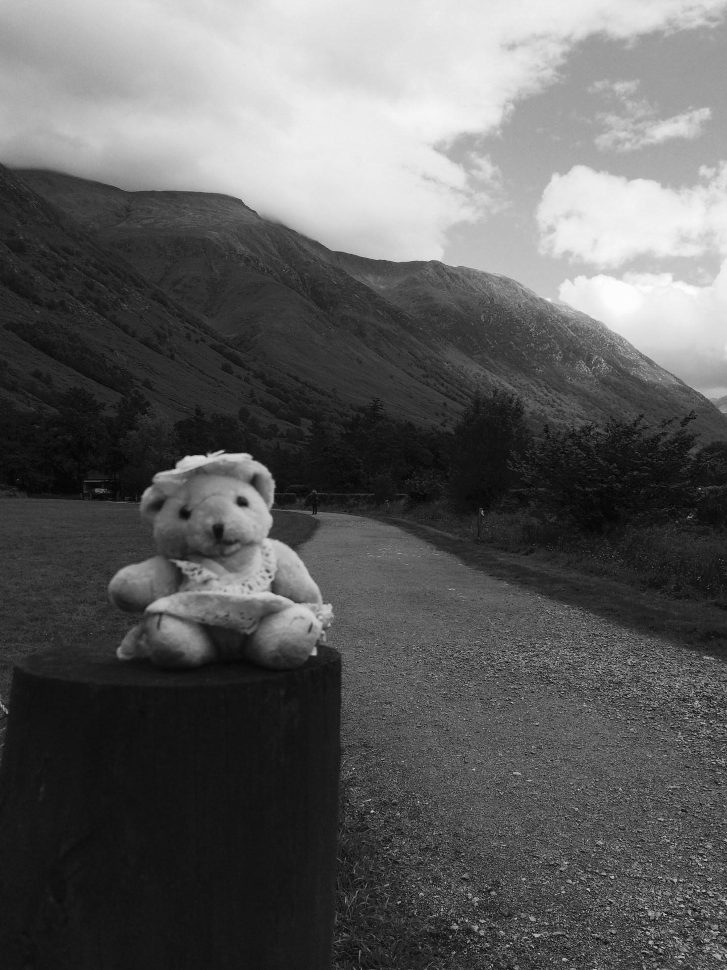 Travel Bear Glen Nevis Black and White Photography