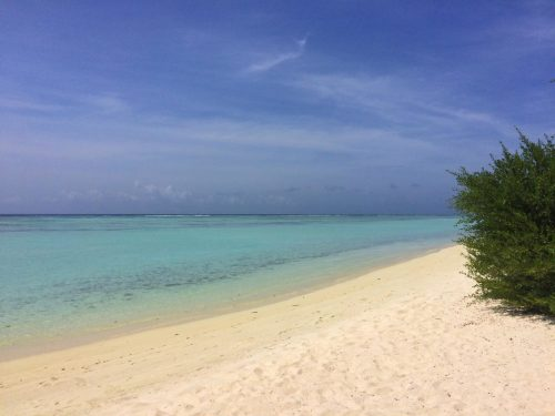 white sand beach turquoise sea blue skies the maldives