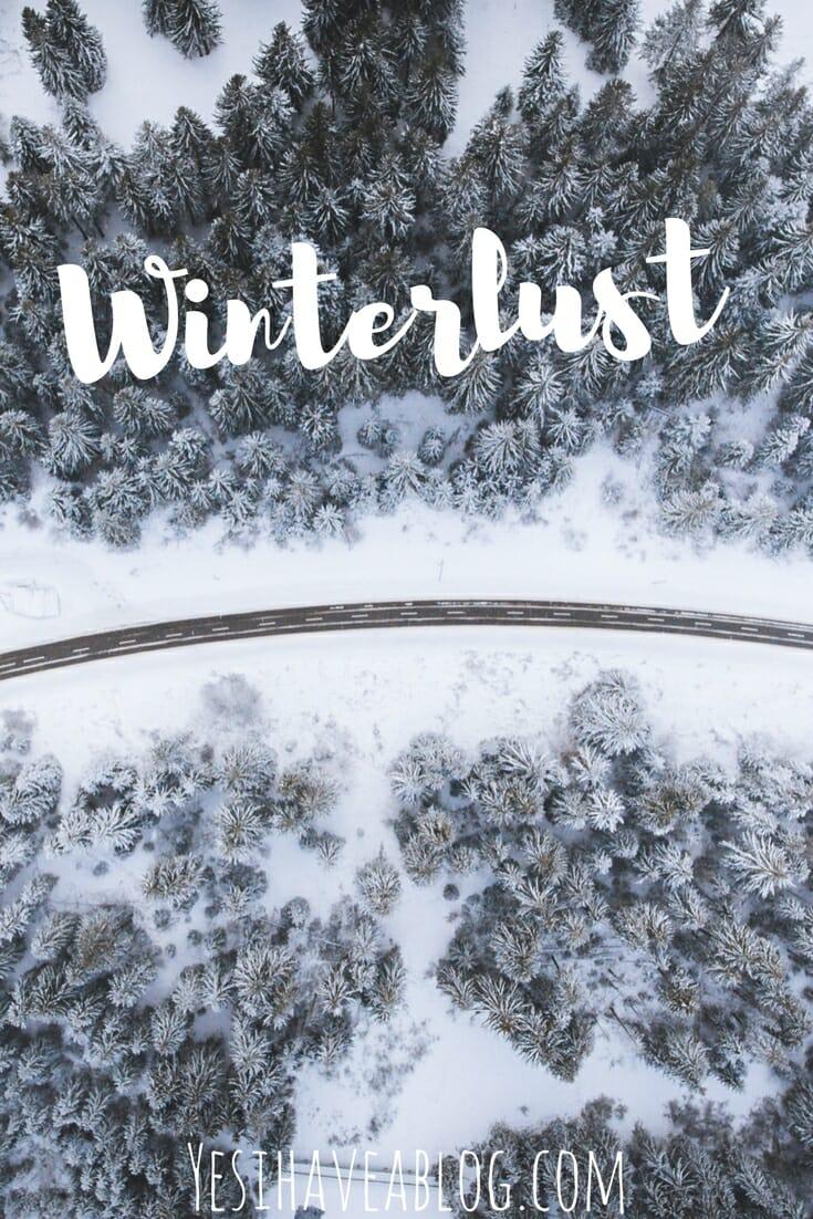Snowy Winter Forest Scene | Winterlust - Yesihaveablog | Winter Travel