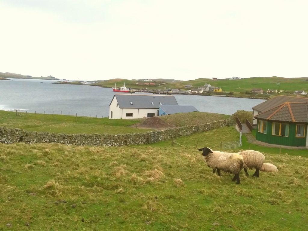 Bridge of Walls - Hiking in Shetland