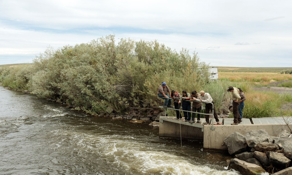 Tribal stewards conduct water quality monitoring. Photo by Sage Brown.