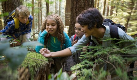 Teacher and children looking at plants in woods