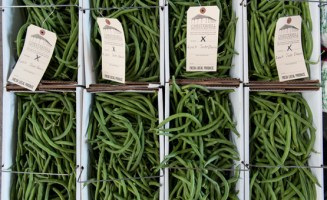 Green beans by Brooke Herbert Hayes.