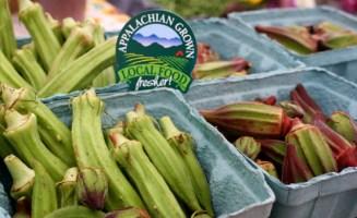 Appalachian grown okra. Photo by ASAP.