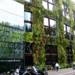 On Rooftops of Paris, Expect Green Roofs and Solar Panels