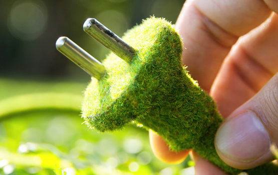 Grass covered plug by Shutterstock