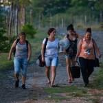 How Cuba's Women Farmers Kept Everyone Fed