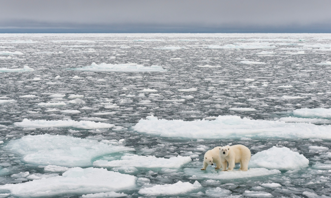 climate-change-global-warming-primary.jpg