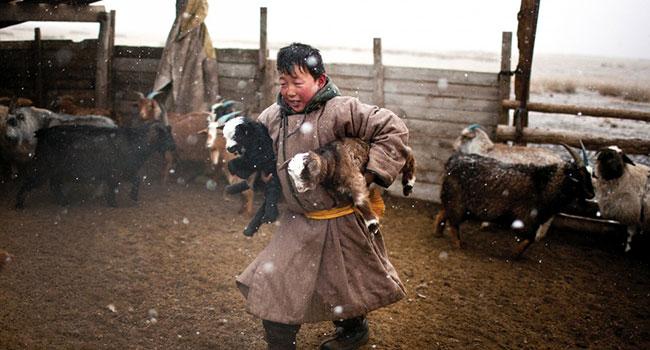 MongolianBoy.jpg