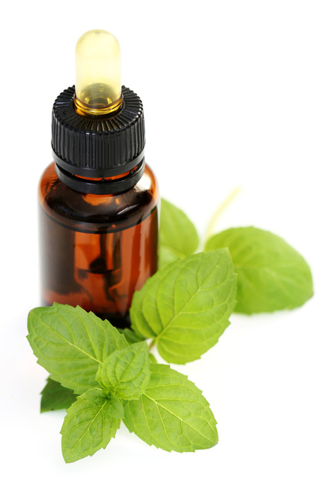 Peppermint And Blood Pressure