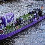 Purple Cow Summary