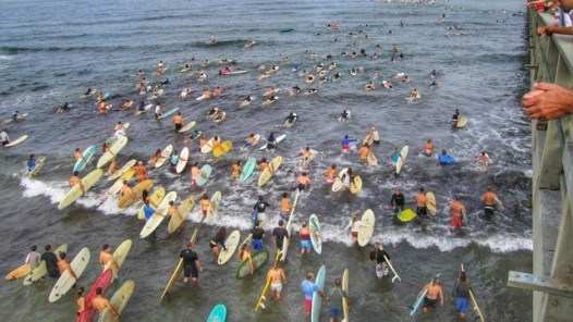 paddle for clean water