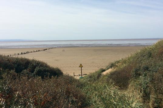 Explore-Berrow-beach