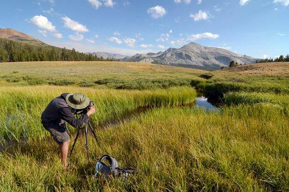 Yosemite Full Day Photo Workshops Cripps